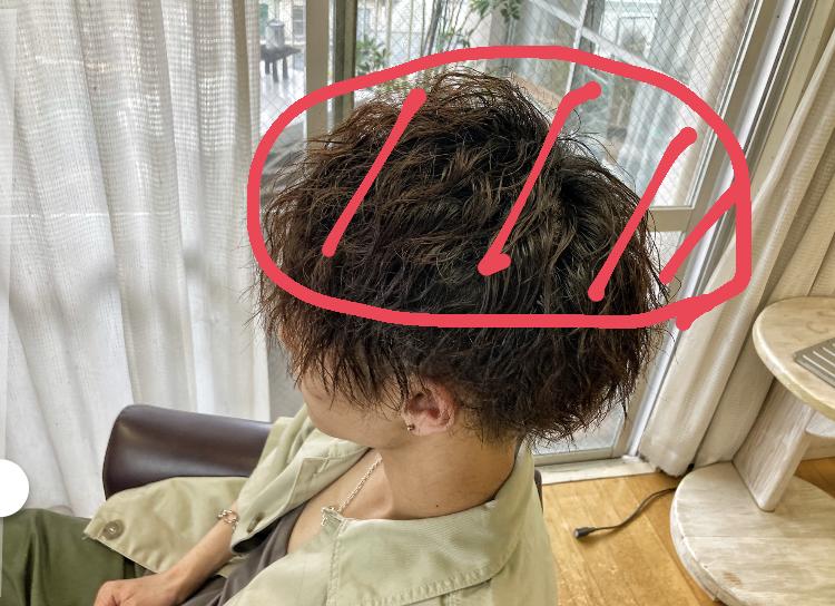 ツイストスパイラルパーマの髪を伸ばしてほしい場所